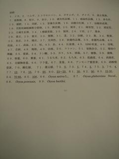 DSC01030_R.JPG