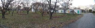 落ち葉でたい肥作り。作業時間内にすべて堆肥置場へ運べませんでした。