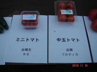 中玉トマト(フルティカ)、ミニトマト(ネネ)