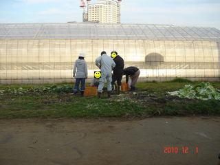 ゴミは宝の山捨てられた作物から再利用の図